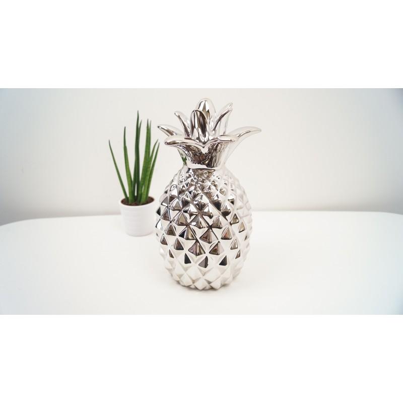 Silver Pineapple Ornamental Pineapple
